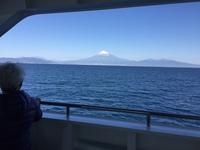 駿河湾の富士